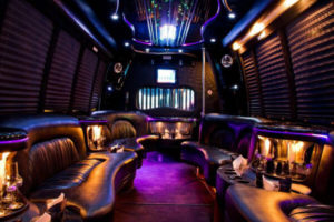 15 Person Party Bus Rental Columbus